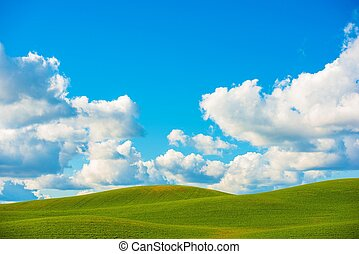 Scenic Meadow Background - Scenic Meadow Photo Background. ...