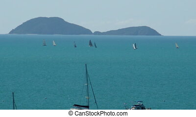 Scenic ocean shot with sailboats