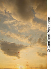 Scenic orange sunset sky background