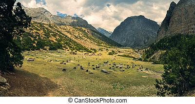 Dolpo - Scenic panorama in Dolpo region in Nepal