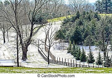 Scenic Pasture Landscape