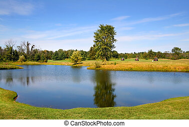 Scenic Pond In A Golf Course