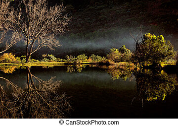 Scenic pond with mist