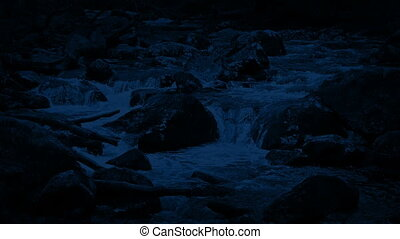 Scenic River In The Wild At Night