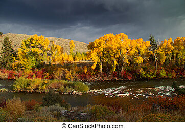Scenic Taylor river in South west Colorado