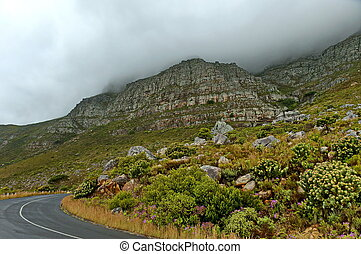 Scenic road at Table mountain