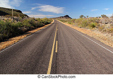 Scenic Roadway through Big Bend National Park, Florida