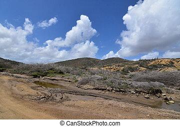 Views of a rural Aruban desert landscape.