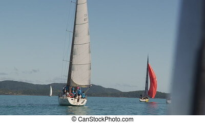 Scenic sailboat shot - A scenic shot of sailboats sailing on...
