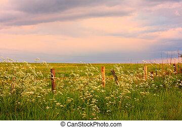 Scenic Scottish landscape