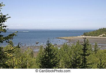 Scenic St. Lawrence River shore - St. Lawrence River shore ...