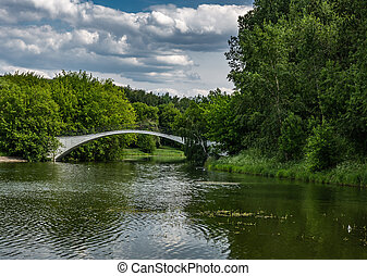 Scenic summer landscape with a lake in the park