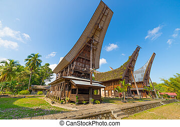 Row of traditional houses in a tipical traditional village of Tana Toraja, South Sulawesi, Indonesia. Wide angle view from below in a bright day of summer. Outstanding local architecture, boat shaped rooftop and traditional decoration.