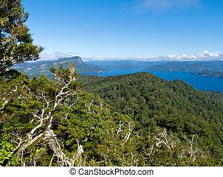 Scenic Urewera NP with Lake Waikaremoana in NZ - Scenic ...