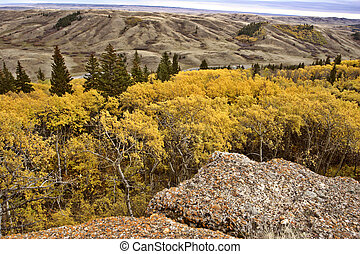 Scenic view from the Conglomerate Cliffs in Cypress Hills ...