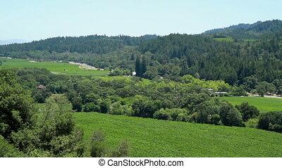 Scenic View Napa Valley shot two - Scenic View Napa Trees...
