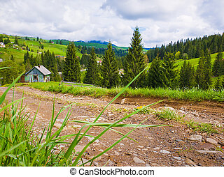 Scenic view of a cuontry road leading to an old village of wooden cabins on the hills of Carpathians. Sunny spring day with green grass, flowering meadows