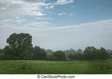 Scenic view of countryside, England