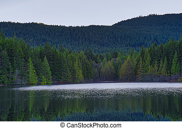 Scenic view of Heart Lake in Ladysmith, Vancouver Island, British Columbia, Canada
