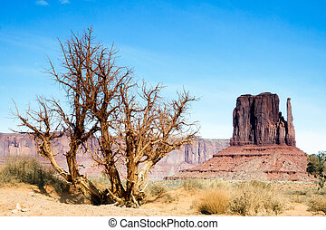 Scenic View of Monument Valley Utah USA