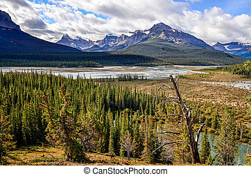 Scenic view of river and montains in Canadian Rockies