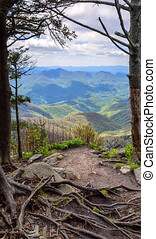 Scenic View of the Blue Ridge Mountains - Scenic view of...