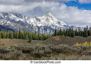 Scenic view of the Grand Teton National Park