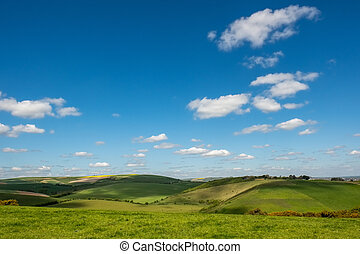 Scenic View of the Rolling Sussex Countryside