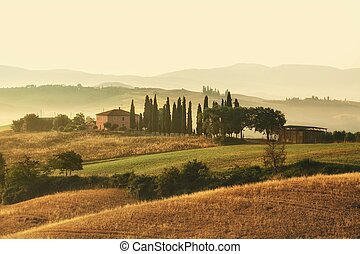 Scenic view of typical Tuscany mist landscape - Early ...