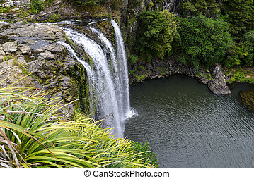 A scenic view of Whangarei waterfall in New Zealand North Island