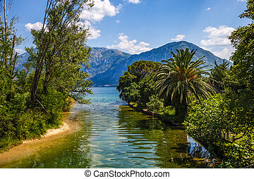 Scenic view - river palm trees and sea