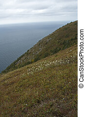Scenic Vista from Skyline Trail, Cape Breton Highlands National Park, Nova Scotia, Canada
