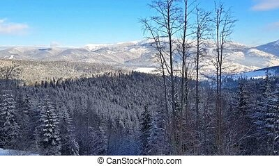 Carpathian Mountains - Scenic winter panorama of Carpathian...