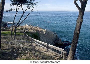 scenico, california