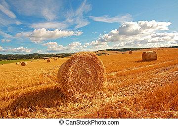 scenico, paesaggio, haybales