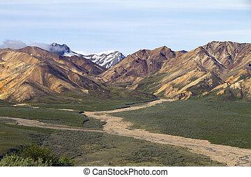 scenico, parco nazionale, denali, vista