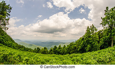 scenics along blue ridge parkway in west virginia