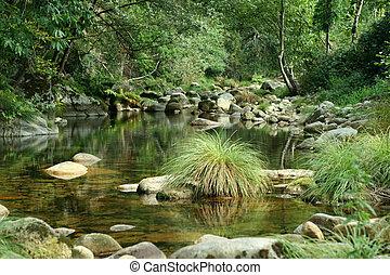 scenics, fiume