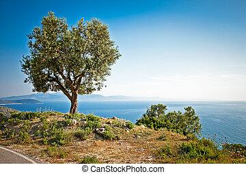schöne , albania., panoramisch, meer, ionian, ansicht