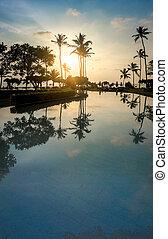 schöne , bild, schwimmender, sonnenaufgang, durch, teich, handflächen, kokosnuss, cluburlaub, aus, hotel