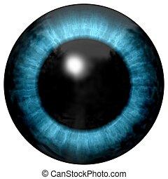 schöne , blaue augen, mit, helles licht, reflexion., modisch, blaues auge