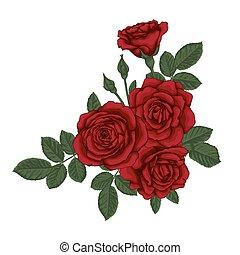 schöne , blumengebinde, leaves., arrangement., rosen, blumen-, rotes