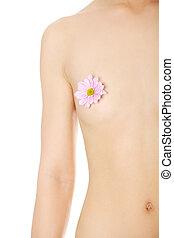schöne , breast., textilfreie , frau