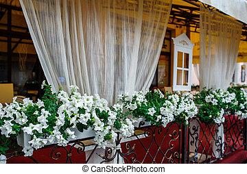 Front Fenster Blumen Weisses Balkon Front Weisse Blumen