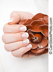 schöne , fingernägel, manicured