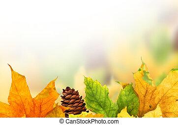 schöne , herbst, hintergrund, mit, ahornholz- blätter