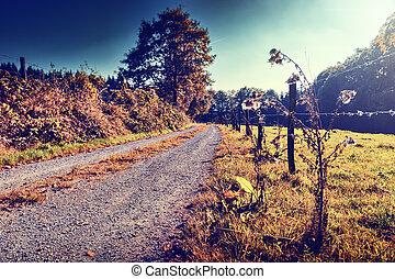 schöne , herbstlandschaft, mit, ländlicher weg