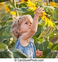 schöne , kind, mit, sonnenblume