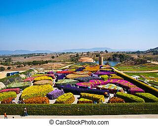 schöne , kleingarten, von, farbenfreudige blumen, in, sommer, auf, blauer himmel, -, thailand