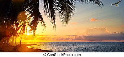 schöne , kunst, aus, tropischer strand, sonnenaufgang